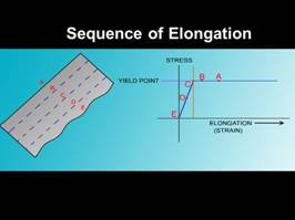 sequence of elongation